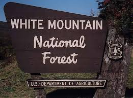 white mountains nf